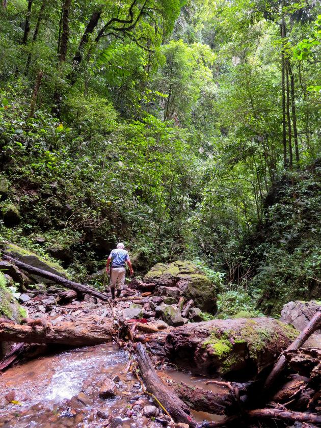 Met de boer naar het regenwoud