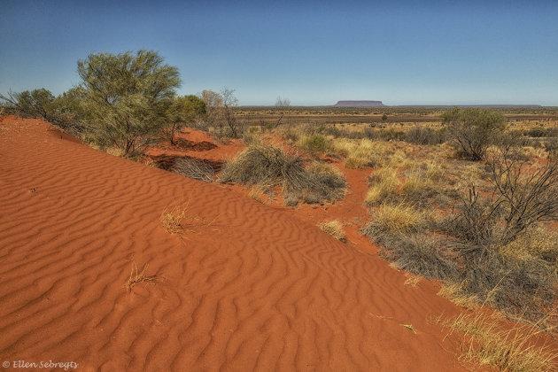 Onderweg in de outback