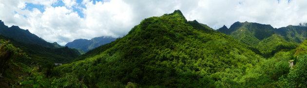Het wilde kantje van Tahiti
