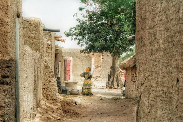 Langs de Niger (2)