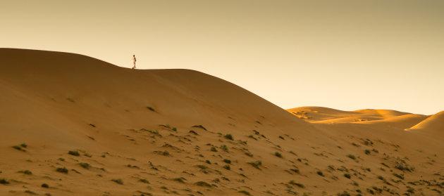 Eenzaam op het duin