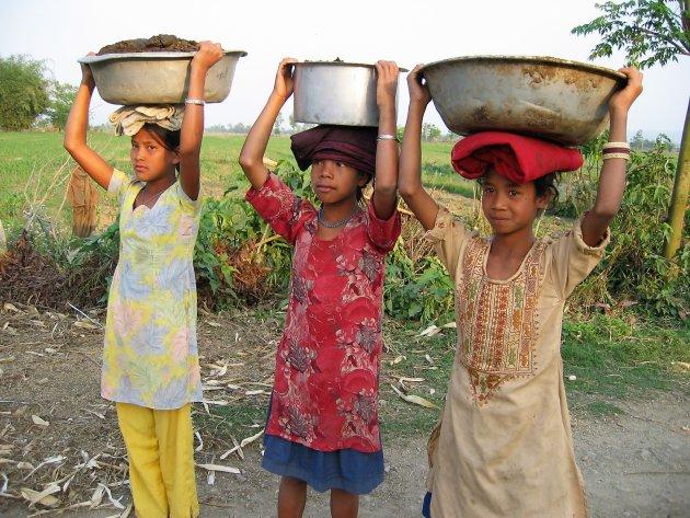 Ontmoeting in Chitwan NP