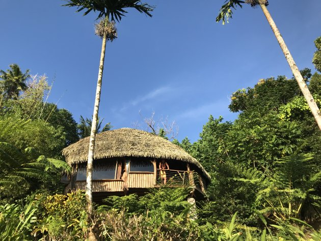Robinson hut