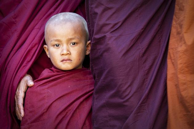 Jonge monnik bij het Ananda Festival