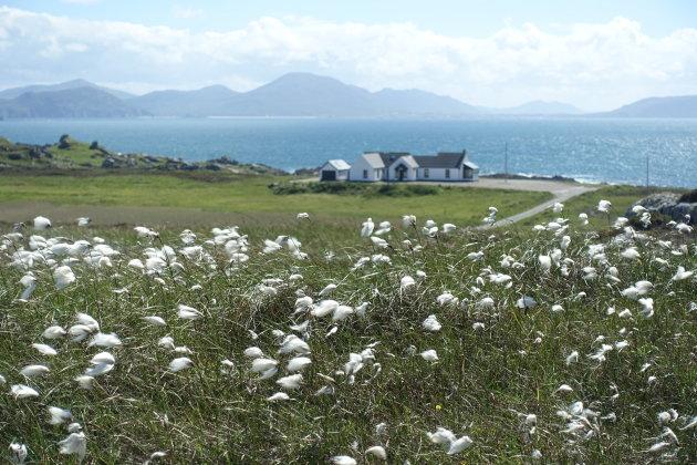 Inishowen Peninsula 2