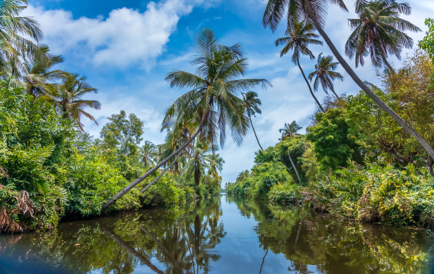The Dutch Canal - Negombo