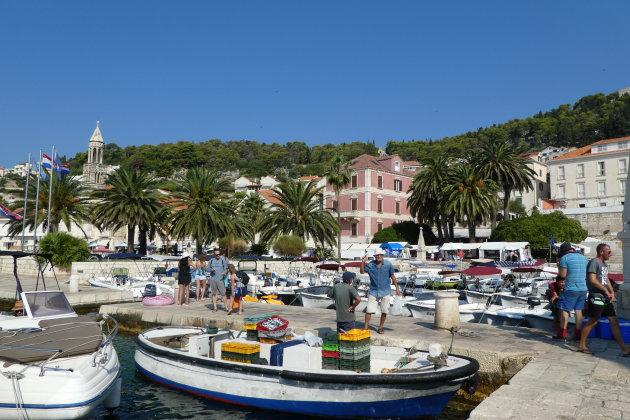 Het Mediterraanse leven