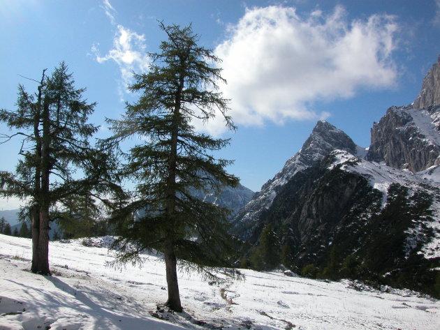 2 boompjes en een bergje