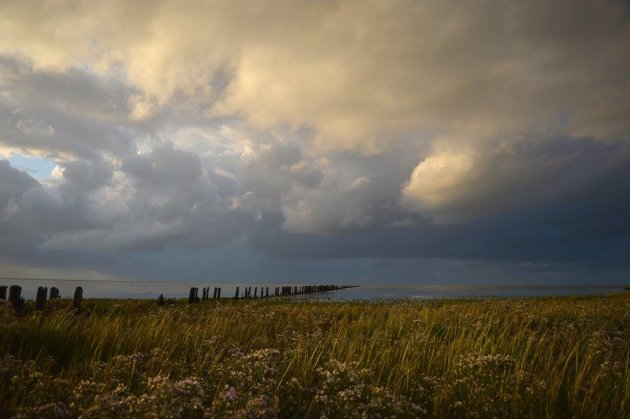 Oude zeewering bij  Koehool (Friesland)