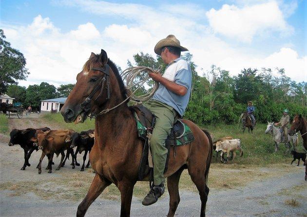 De cowboys van Cuba