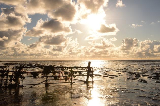 Gestolde zee