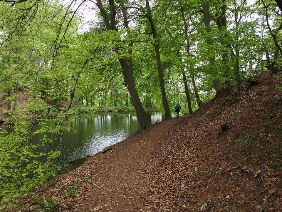 Het stiltegebied in Sint-Jansberg, Limburg
