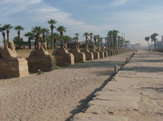 De dromos van de Luxortempel