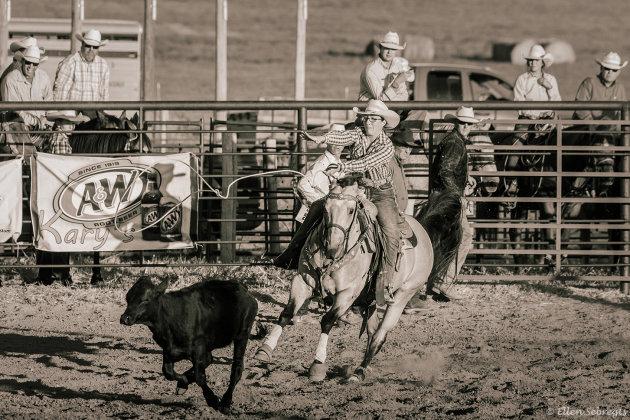 Cowgirls kijken in de VS