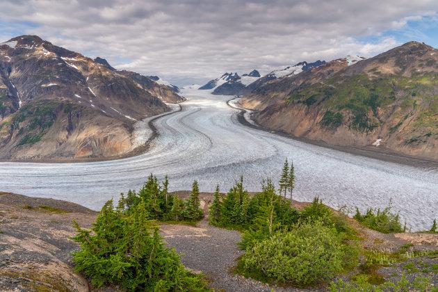 Salmon Gletsjer