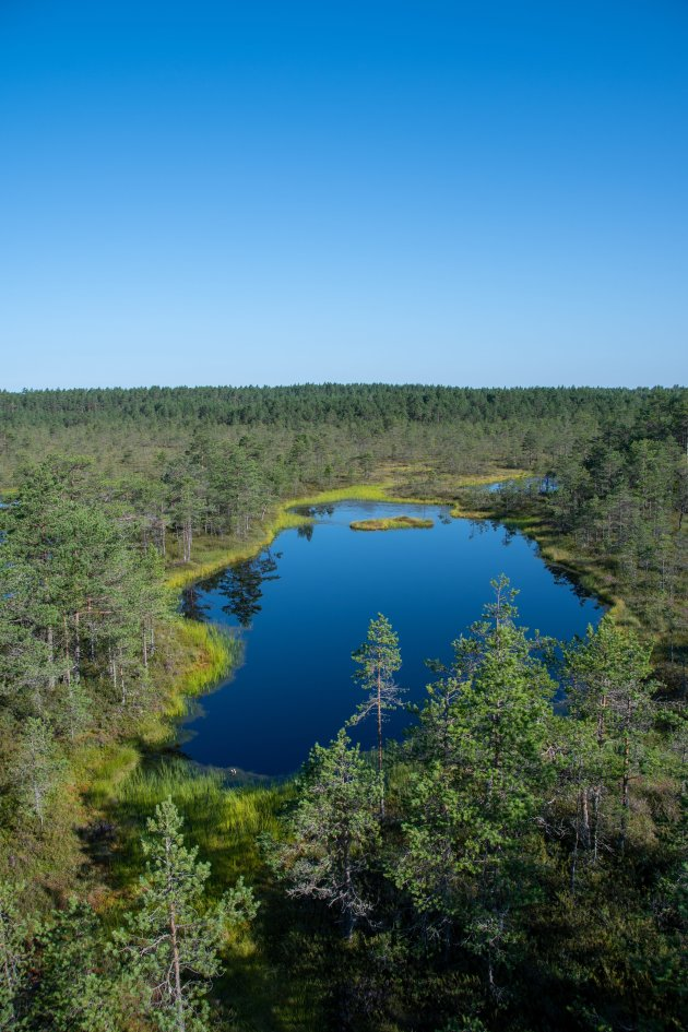 Compleet wolk-loos in Estland
