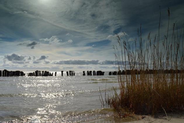 Palen voor de kust