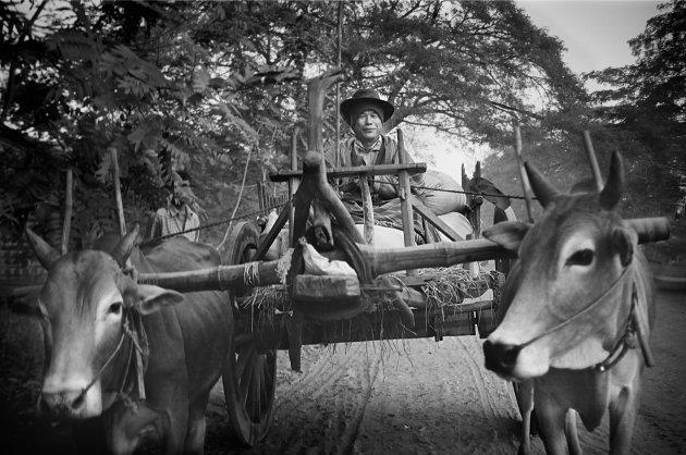 Birma onderweg naar het noorden