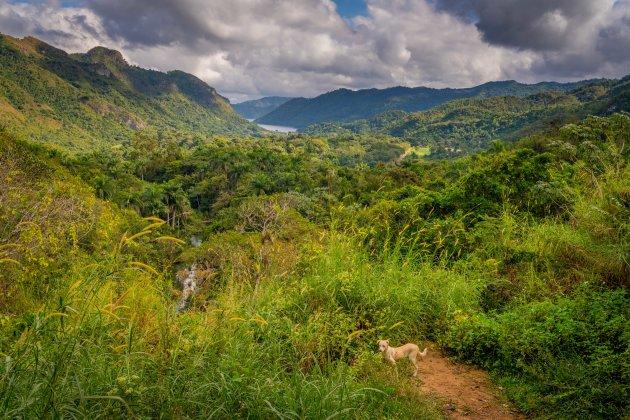 Natuurgebied El Nicho