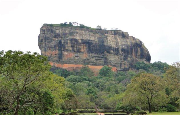 De Leeuwenrots van Sigiriya.