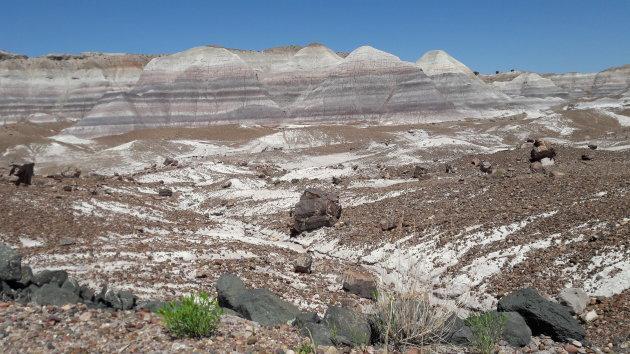 Petrified Forest, Arizona  2-luik, landschap