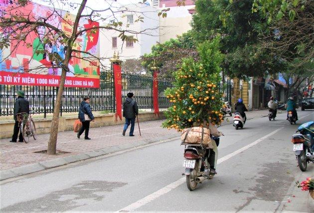 Kerstboom in Vietnam.