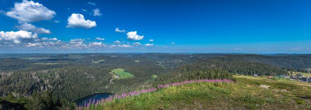 Uitzicht op de Feldberg