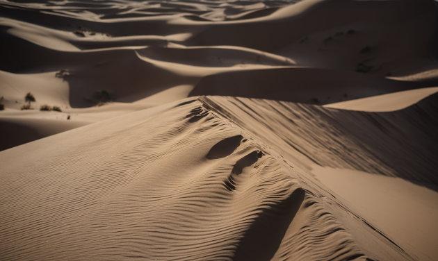 Al wat blijft zijn voetstappen in het zand