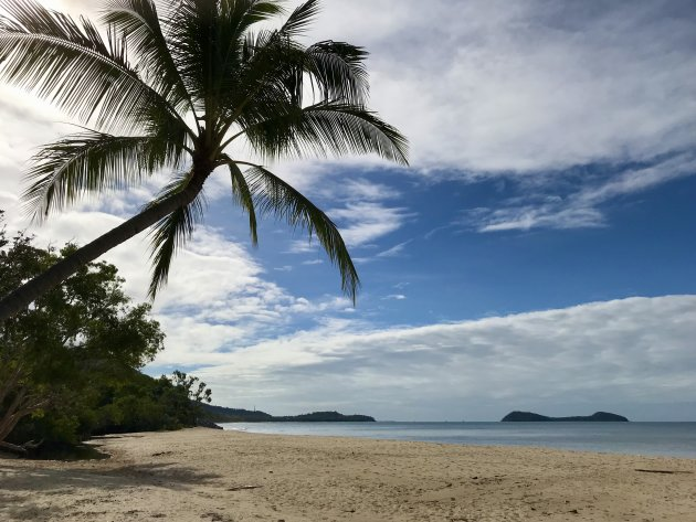 Paradijselijk Kewarra Beach