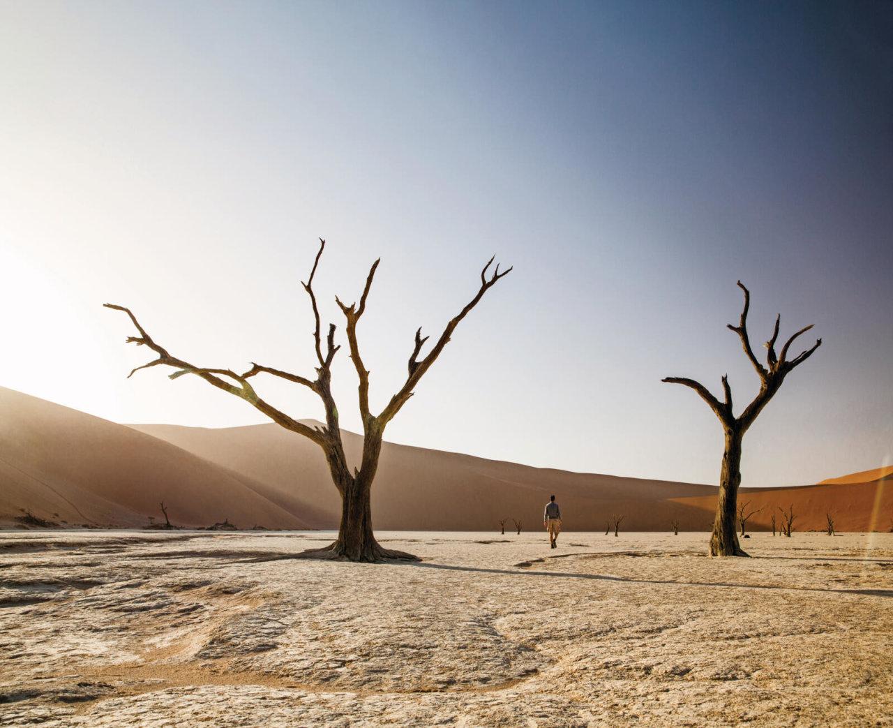 Klimaatverandering na corona: hoe we de aarde moeten beschermen