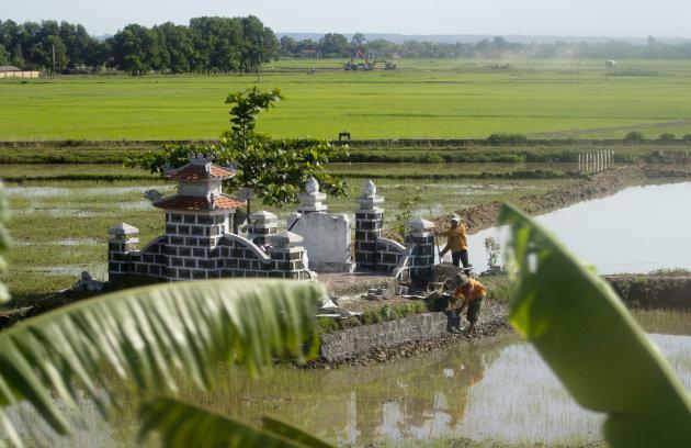 Familiegraf tussen de rijstvelden