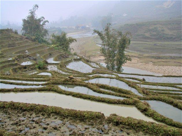 Rijstterrassen in noord Vietnam.
