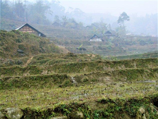 Rijst terrassen in de bergen bij Sapa.