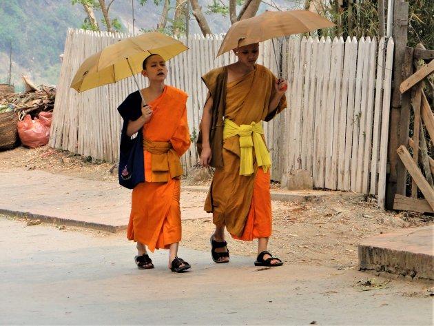 Monniken aan de wandel.
