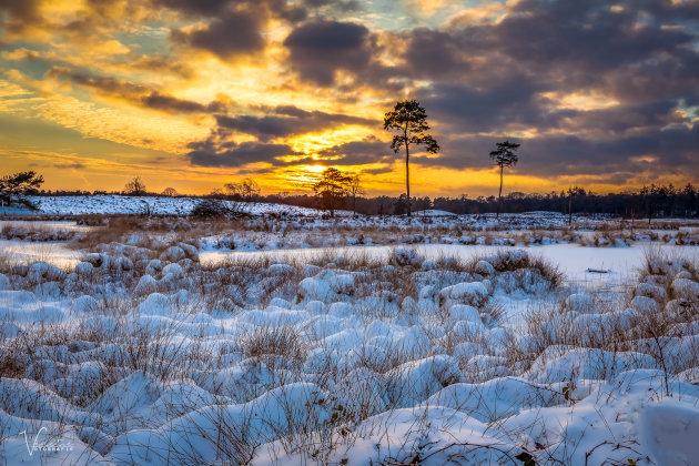 Snow and Sunset Hatertse en Overasseltse Vennen