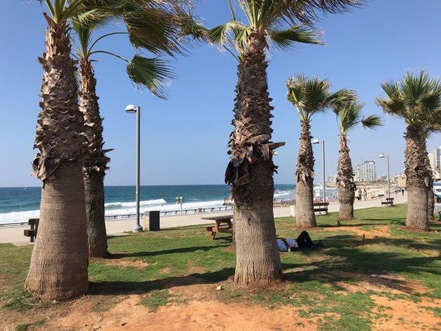 Relaxed Tel Aviv