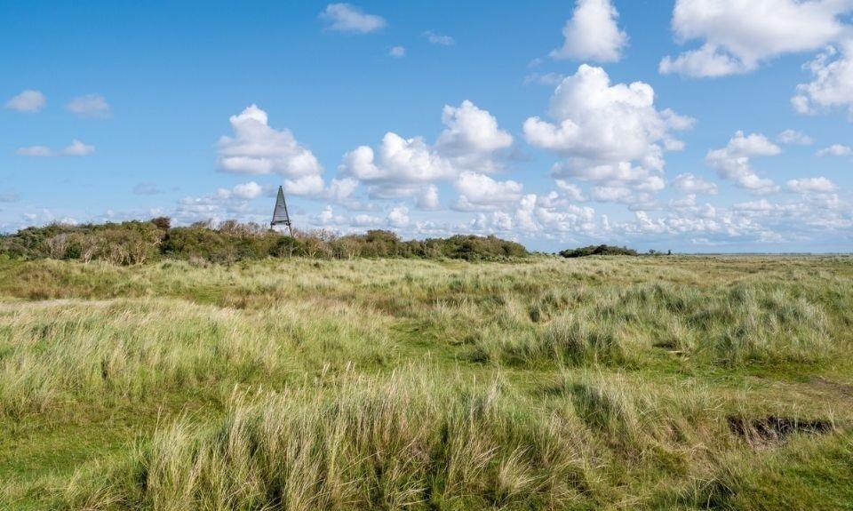 KaapKobbeduinen_Nederland_Schiermonnikoog