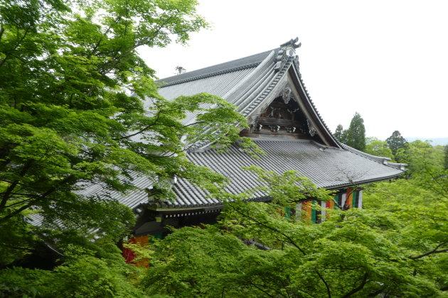 Op de oostelijke berg van Kyoto
