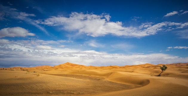 Sahara zand