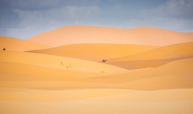 Zandhappen in Marokko