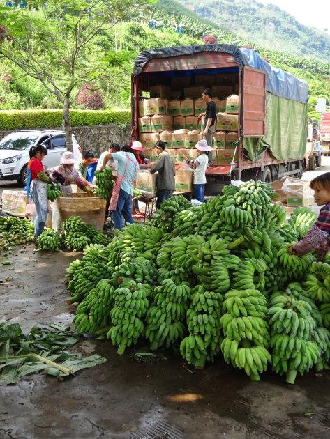 Bananenfabriek