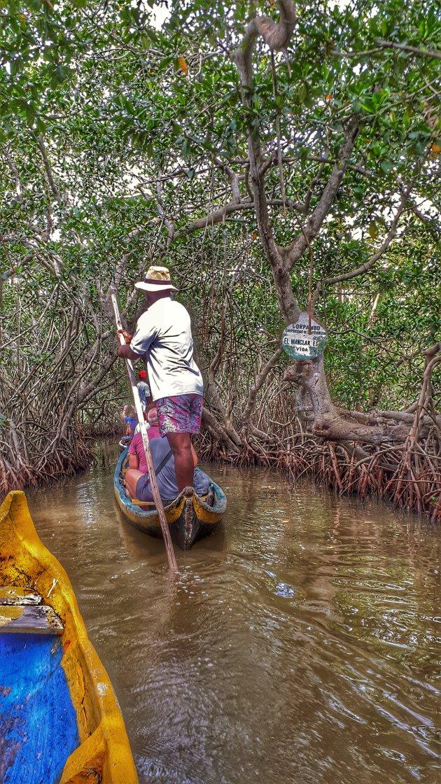 Door de mangroven