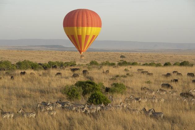 Ballonvaart boven de Masai Mara / Kenia