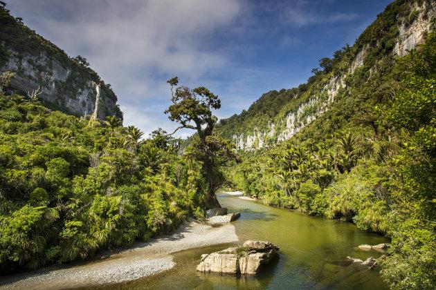 Kloof van de Pororari rivier