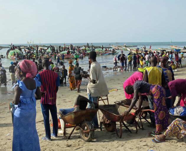 De vissershaven Tanji