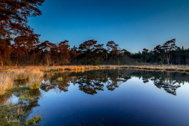 Reflectie in de Zevensboomsven