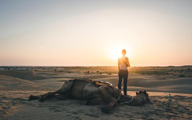Zonsondergang in de Tharwoestijn.