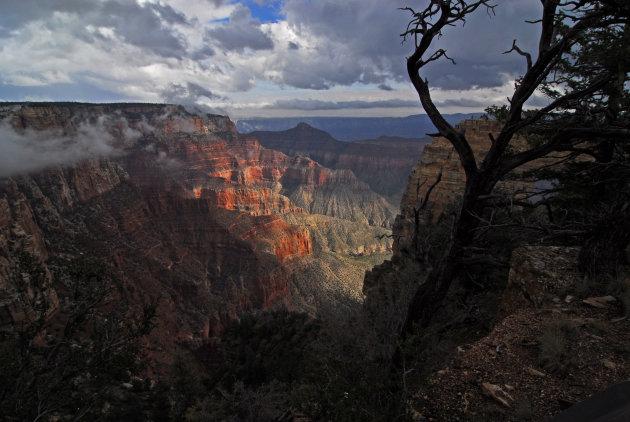 Grand Canyon vanaf de North Rim