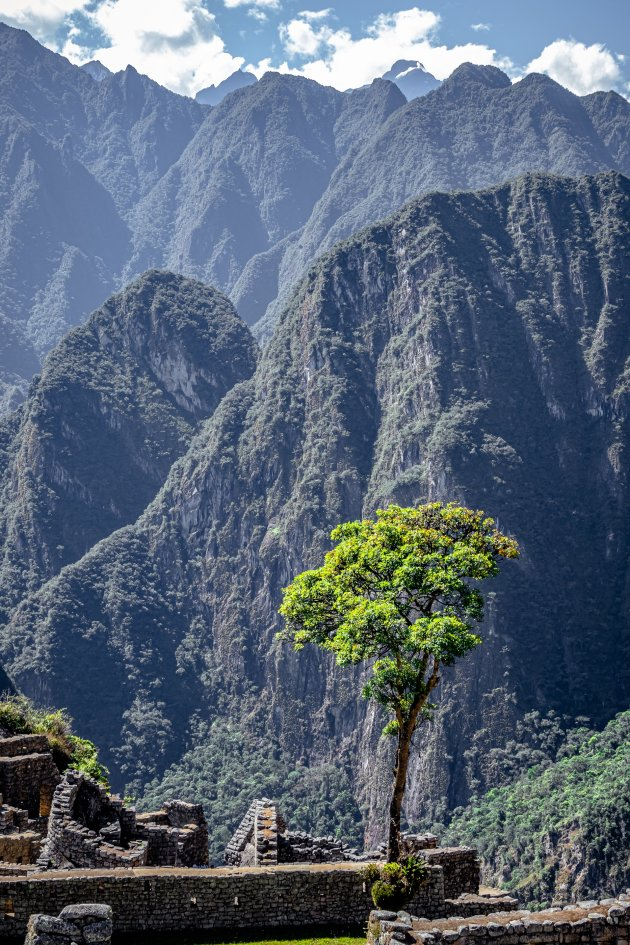 Machu Picchu Scenery