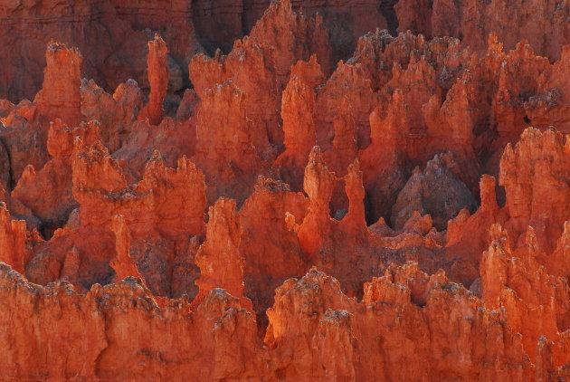 Hoodoos in Bryce Canyon NP, Utah, Verenigde staten